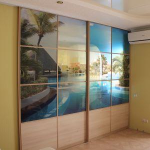 Раздвижная перегородка стекло с фотопечатью (1)