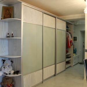 Комбинированный шкаф-купе матовое стекло и шпон