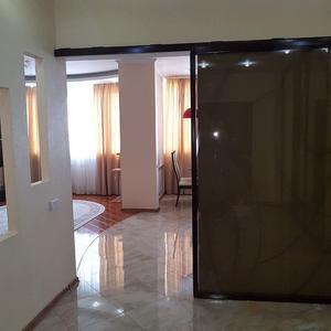 Подвесная дверь из цельнолистового стекла в профиле