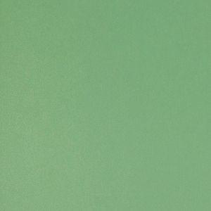 763 Зелёная Степная