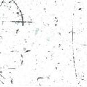 389 M Asimetriya Prim