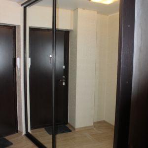 Зеркальный шкаф-купе (гардероб) 1