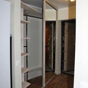 Зеркальный встроенный шкаф в прихожей (2)