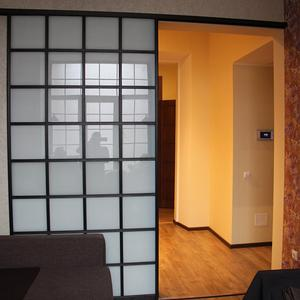 Раздвижная дверь в гостиной