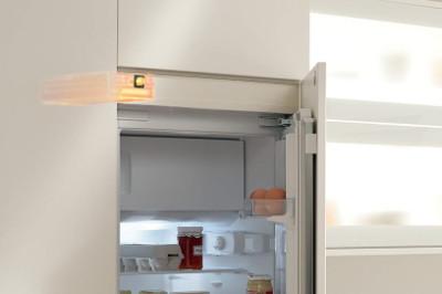 Блок SERVO-DRIVE встроенный в шкаф холодильника