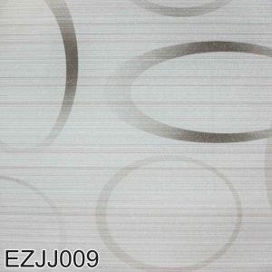 Ezjj 009