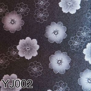 Yj 002