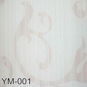 Ym 001